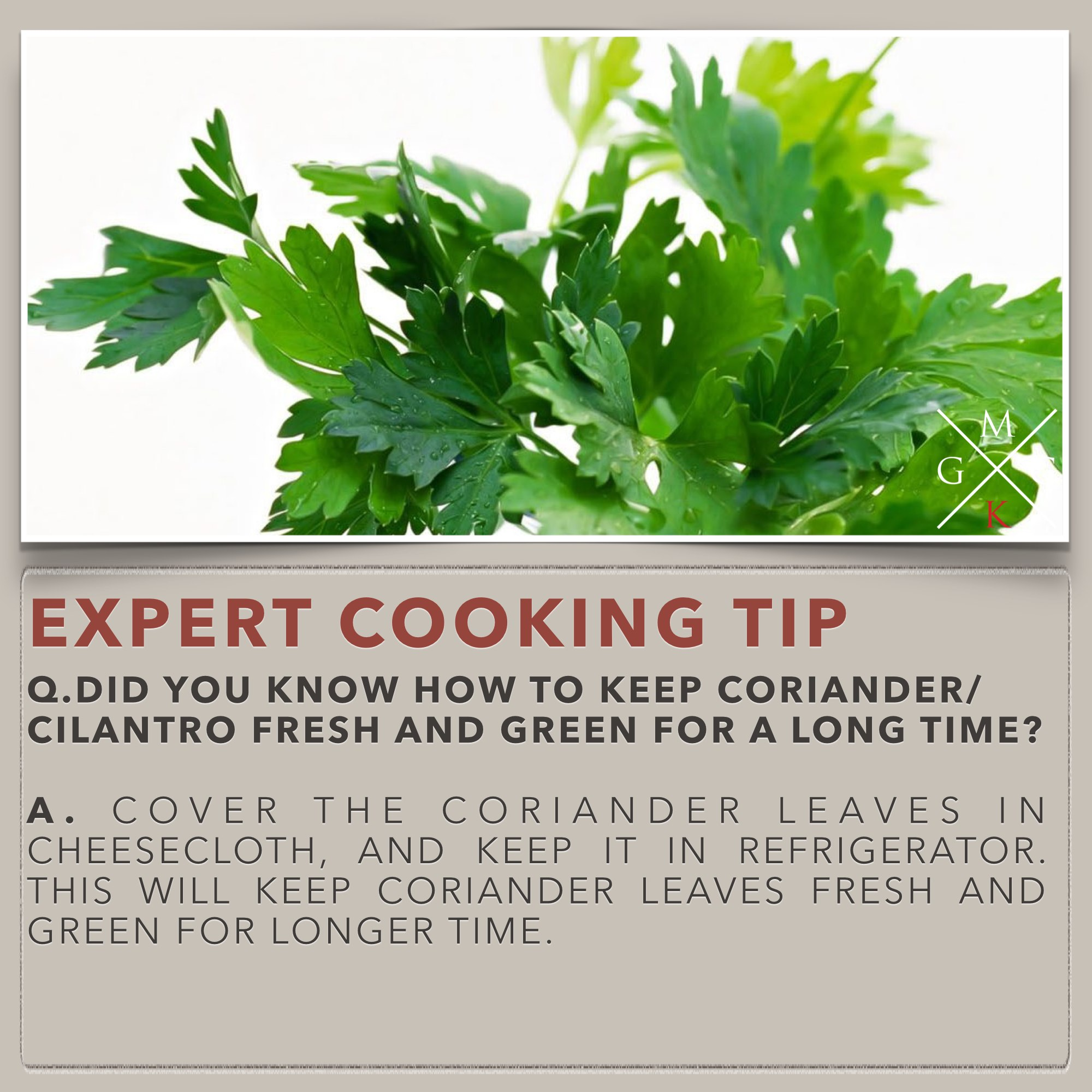 Cooking Tips - How To Keep Coriander Leaves Fresh For Long Time?