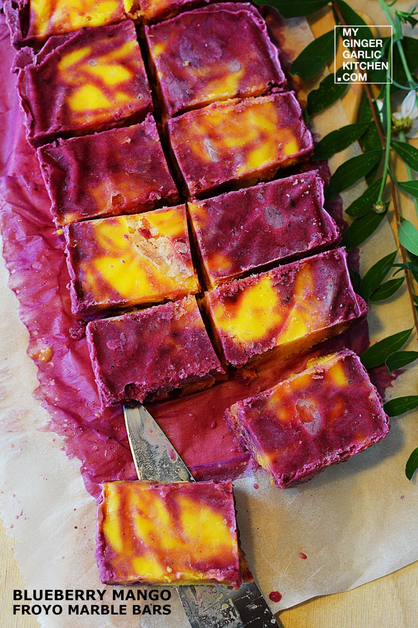 Image - recipe blueberry mango froyo marble bars anupama paliwal my ginger garlic kitchen 4
