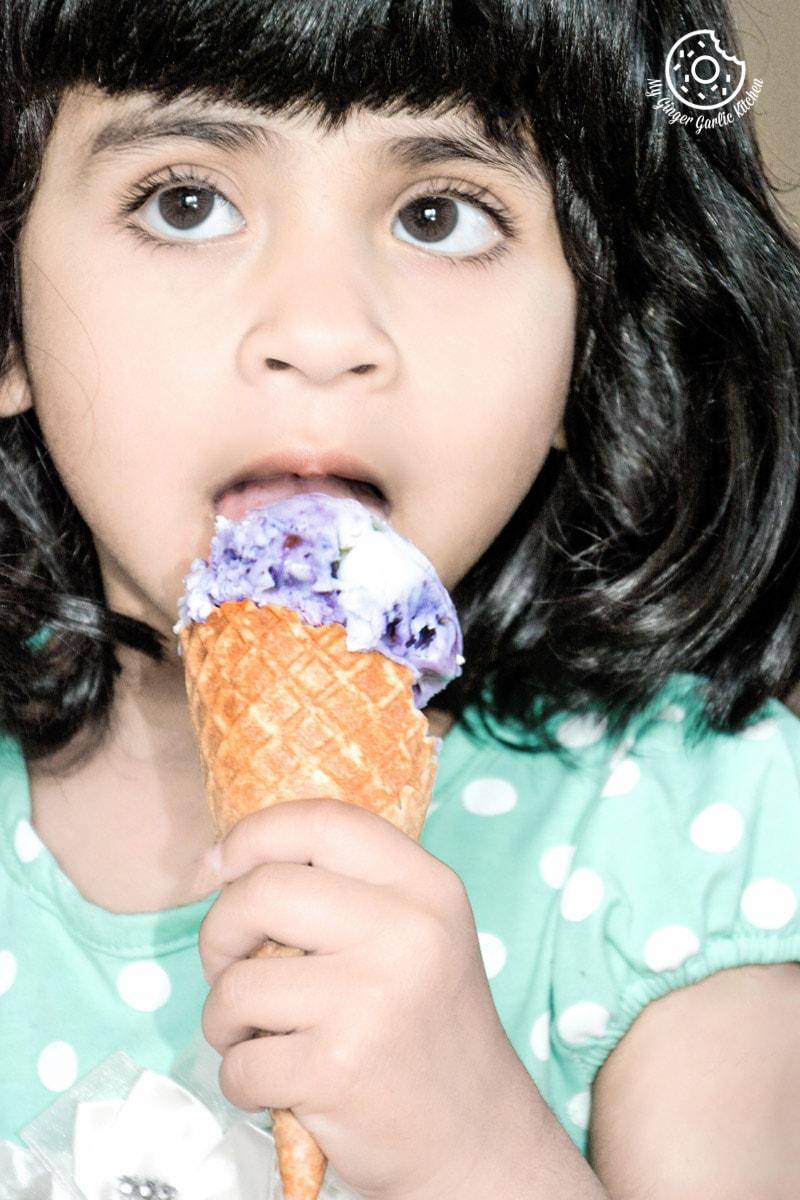 recipe-no-churn-vegan-coconut-blubeberry-icecream|mygingergarlickitchen.com/ @anupama_dreams